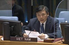 Vietnam preocupado por aumento de violencia y situación humanitaria en Gaza