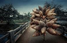 Honrada obra vietnamita en concurso internacional de fotografía