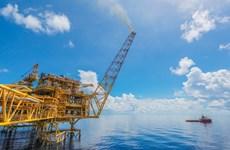 Necesitan reajustar trámites para inversión en proyectos petroleros de Vietnam