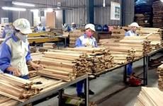 Aumentan exportaciones de productos forestales de Vietnam