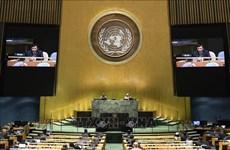 Vietnam condena actos que provocan inestabilidad política en Haití