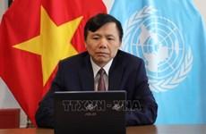 Vietnam hará todo lo posible para cumplir su misión en la ONU
