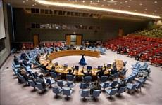 Vietnam subraya necesidad de cumplir con Convención sobre Armas Químicas