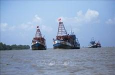 Comisión Europea discutirá con Vietnam sobre tarjeta amarilla a productos acuáticos