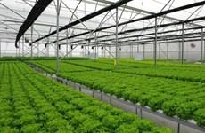 Buscan oportunidades entre Vietnam y Alemania en campo de tecnología verde