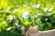 Vietnam elige enfoque de desarrollo sostenible hacia una economía verde