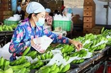 Rusia aumenta importación de verduras y frutas de Vietnam