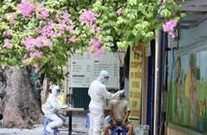 Continúa en Vietnam reducción de casos del COVID-19