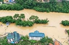 Vietnam y otros países miembros de la ASEAN por superar desastres naturales