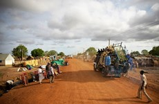 Vietnam enfatiza importancia de misión de la ONU en mantenimiento de la paz en Abyei