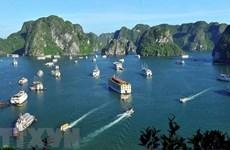 Insta viceprimer ministro vietnamita a recuperar actividades turísticas de manera segura