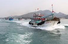 Localidades costeras de Vietnam por combatir contra la pesca ilegal