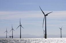 Empresa vietnamita tiene prioridad para firmar contrato de energía eólica en Taiwán
