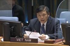 Vietnam preside reunión del Comité del Consejo de Seguridad sobre Sudán del Sur
