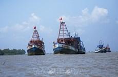 Vietnam determina a rectificar la pesca ilegal en aguas extranjeras