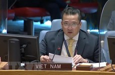 Vietnam resalta diálogo pacífico y búsqueda de soluciones de paz duradera en Kosovo