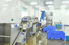Exportaciones de mariscos de Vietnam a España mantienen un crecimiento constante