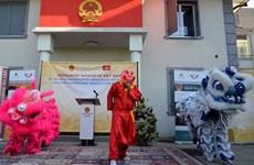 Día cultural de Vietnam-Suiza promueve intercambio popular bilateral