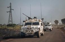 Vietnam aplaude alto el fuego unilateral del gobierno de la República Centroafricana