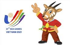 Debaten sobre la organización de los SEA Games 31 en Vietnam