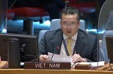 Vietnam preocupado por situación en región de los Grandes Lagos en África