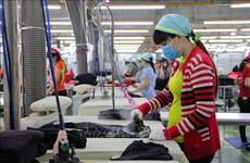 """Empresa vietnamita supera la """"tormenta COVID"""" para conquistar mercado global"""