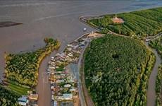 Lanzan proyecto de conservación del hábitat costero en delta del Mekong en Vietnam