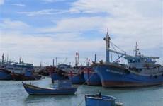 Empresas vietnamitas se comprometen a combatir la pesca ilegal