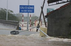 Inundaciones provocan cuantiosas pérdidas en el centro de Vietnam