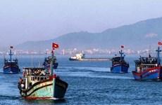 Vietnam redobla medidas contra la pesca ilegal