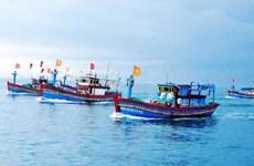 Provincia vietnamita de Kien Giang por erradicar pesca irreglamentaria