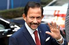 Brunei aprecia progreso de ASEAN en lucha contra el COVID-19 y a favor de la recuperación económica