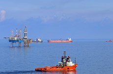 Grupo vietnamita se empeña en mejorar exploración de petrólero y gas