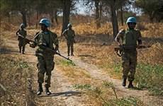 Vietnam pide resolver cuestión de Abyei mediante medios pacíficos