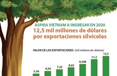 [Infografía] Aspira Vietnam a ingresar 12,5 mil millones de dólares por exportaciones silvícolas en 2020