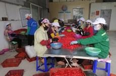 Empresas vietnamitas deben transformar modelo de negocios para adaptarse al periodo de pandemia