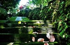 Desarrollan ecoturismo en la antigua aldea de Loc Yen