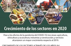 Crecimiento de los sectores en 2020