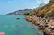 Playa Sau, destino atractivo de ciudad vietnamita de Vung Tau