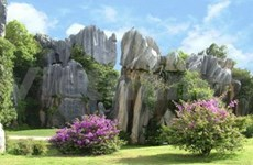Promocíon turística Viet Nam-China