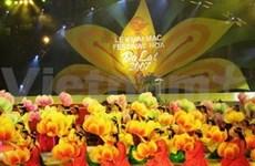 Fuegos artificiales en Festival de Flores Da Lat