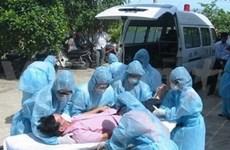 Viet Nam: 35 decesos por la gripe A (H1N1)