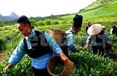 Destacan logros vietnamitas en reducción de pobreza