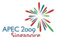 Presidente vietnamita a cumbre APEC