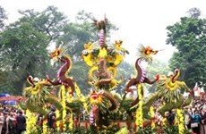 Culmina Festival floral en Ha Noi