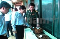 Presidente vietnamita destaca proyecto de bauxita