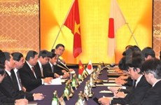 Viet Nam- Japón: Cooperación económica