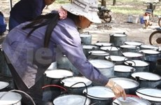 Viet Nam intensificará exportaciones de caucho
