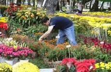 Inauguran festival de flores en Ho Chi Minh