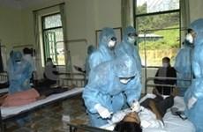 Provienen sobre reaparición de gripe aviar